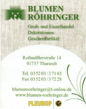 19-Blumen-Röhringer